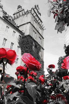 Schloss, Foto-Nr. 2014_342
