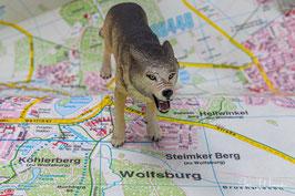 Wolf auf Stadtplan, Foto-Nr. 2021_05_1149