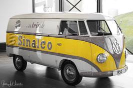 Sinalcobus, Foto-Nr. 2015_162_CK