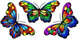 "Fensterbild ""Zauberhafte Schmetterlinge""  3er-Set"
