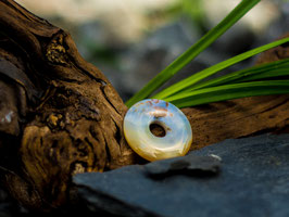 Ozeanjaspis - Donut