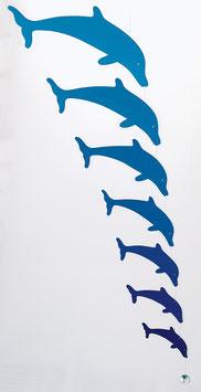 Harmony-Dolphins
