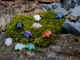 Edelsteinschildkröten mit Bohrung