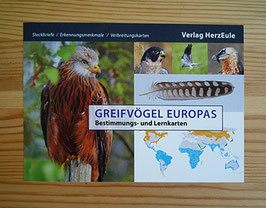 Europäische Greifvögel - Lernkarten für die Falknerprüfung
