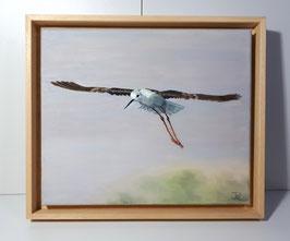Garceta volando