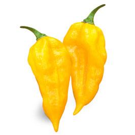 Peperoncino piccante VERY HOT Fatalii giallo