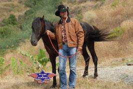 Stars & Stripes Jacke ,,Range Rider Corn,,
