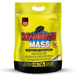 MAMMOTH MASS 6,80KG
