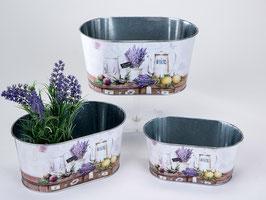 Set fiorera lavanda