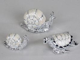 Tartaruga perla argento