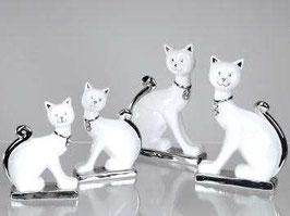 Gatto bianco argento