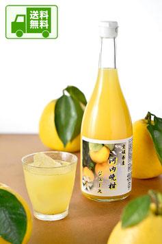 河内晩柑100%ジュース【6本セット】