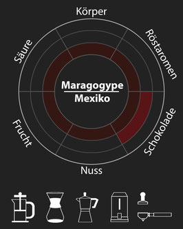 Maragogype (Mexiko)