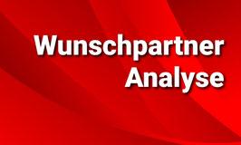 Wunschpartner-Analyse