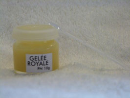 Gelée Royale - Pot
