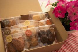 オリーブ【ミニ8種類】クッキーセット