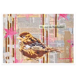 Nesthocker // Postkarte