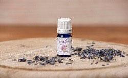 Wild Lavender - Wilder Lavender - 5 ml