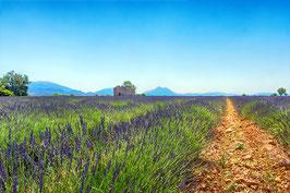 La haute Provence  par Mateo Brigande