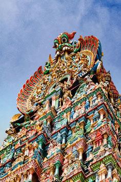 Flamboyant (Madurai Meenakshi Temple) par Mateo Brigande