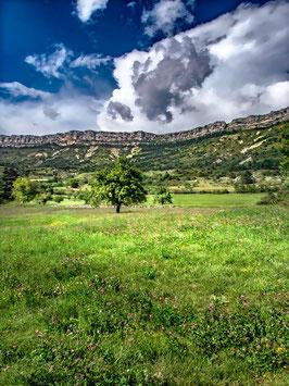La montagne au printemps  par Mateo Brigande