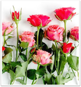 ④COLORと本数が選べるバラの花束
