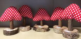 Pilze auf Holzscheibe