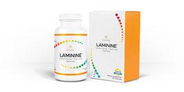 Laminine (120 капсул)