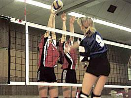 Volleyball-Turniernetz DVV I ohne Umlenkrollen