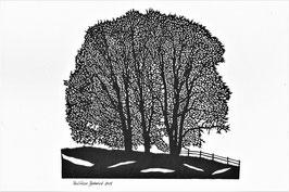 Scherenschnittkarte Bäume
