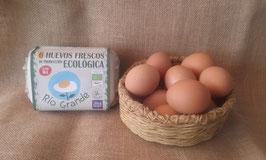 6 Huevos Frescos de Produccion ecológica XL