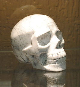 Crâne Howlite