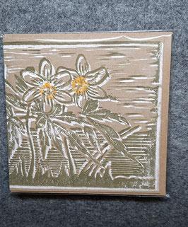 16/2020 Buschwindröschen Linolschnitt, dreifarbig handgedruckt