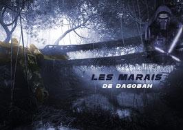 Les Marais de Dagobah (Gr)