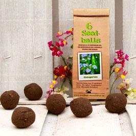 Seedballs Balkongarten 6er