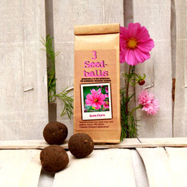 Seedballs Rosa Flora 3er