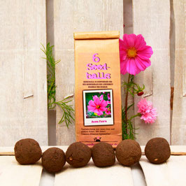 Seedballs Rosa Flora 6er
