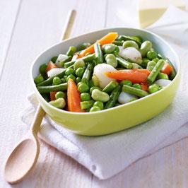 W419 - Jardinière de légumes
