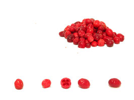 Bio Cranberries gefriergetrocknet