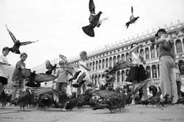 Venise - Place Saint-Marc