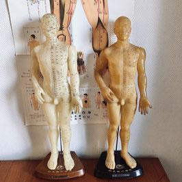 Anciens grands mannequins d'acupuncture