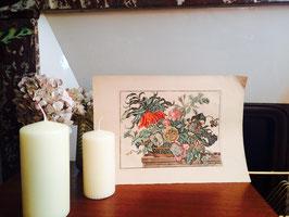 Gravure aquarellée fleurs