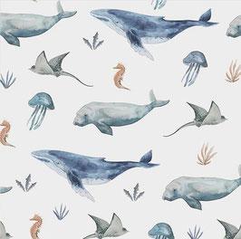 Fische und Meer