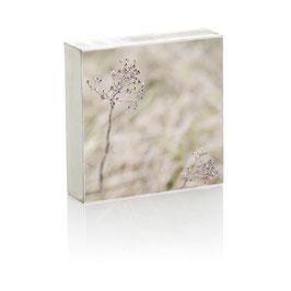 """Fotoplatte """"Blume"""""""