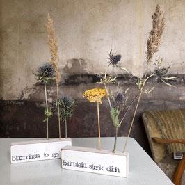 Trockenblumen Steckleiste