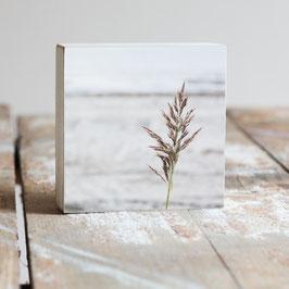 "Fotoplatte ""Gras"""