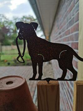 Hund mit Leine zum Schrauben