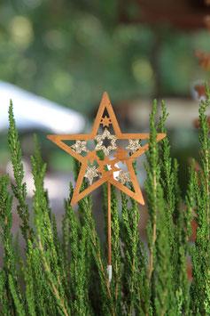 Stern zum Stecken