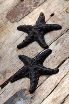 Kleiner Seestern