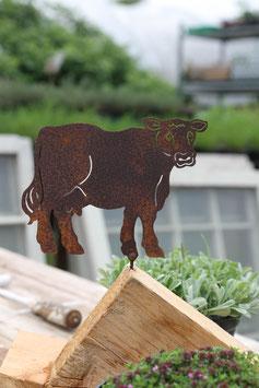 Kuh zum Schrauben